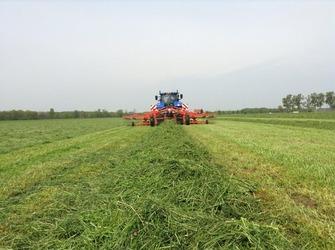 Hena bvba - Heist-op-den-berg - Grasbewerkingen